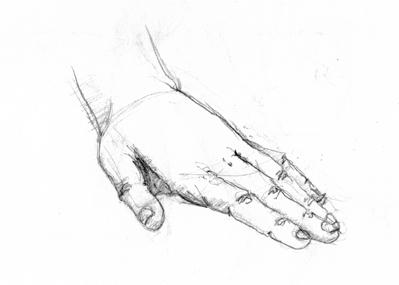anatom06