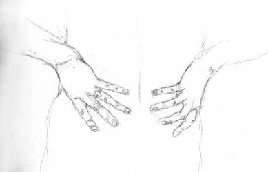 anatom07