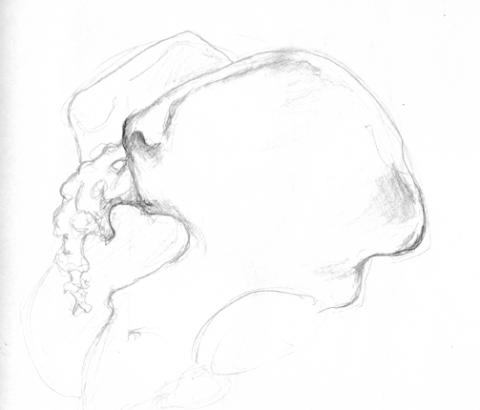 anatom09