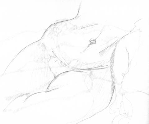 anatom13