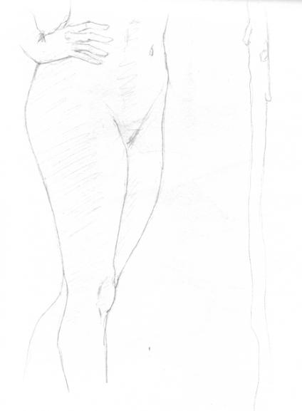 anatom18