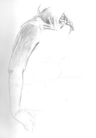 anatom20