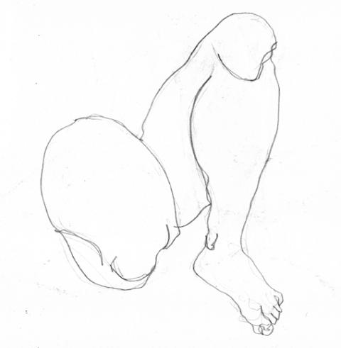 anatom22