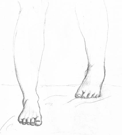 anatom23